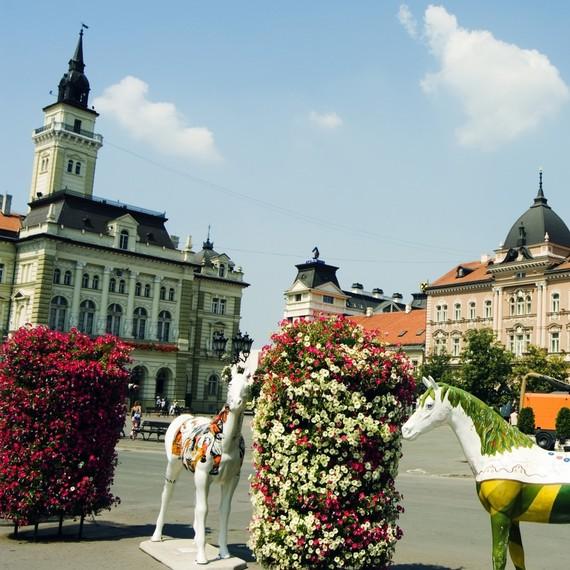 Za čist Novi Sad